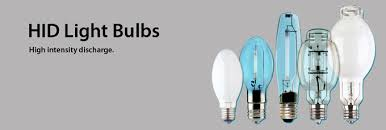 hid bulbs products