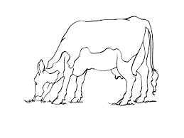 Coloriage Vache Humoristique Caricature 1001 Animaux Pour