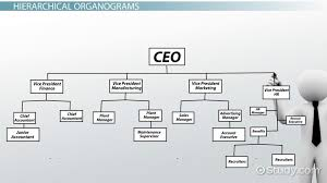 what is an organogram definition structure exle video