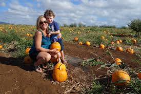 Waimanalo Pumpkin Patch And Corn Maze by Kicking Back In Kailua October 2012