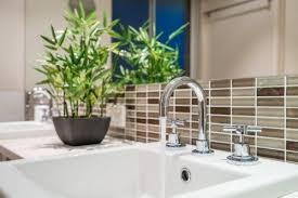 diese pflanzen sollten im badezimmer nicht fehlen besser