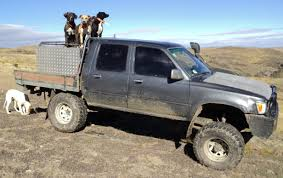 100 Hunting Trucks New Zealand Working Hilux The Best Stuff In The World
