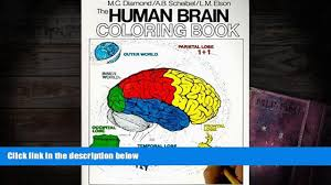 Audiobook The Human Brain Coloring Book Concepts Series Marian C Diamond For Kindle