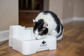 water for cats best automatic pet water with filters for cats and dogs
