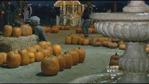 Pumpkin Patch Fresno Ca Hours by Pumpkin Patch Death Threats Owner Called After Canceled
