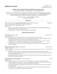 Great Marketing Resume Examples International Director Sales And Manager