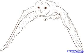 Draw Soren, Step By Step, Drawing Sheets, Added By Dawn, August 4 ... Pencil Drawings Of Old Barns How To Draw An Barn Farm Owl On Branch Drawing Tattoo Sketch Original Great Finished My Barn Owl Drawing Album On Imgur By Notreallyarstic Deviantart Art Black And White Panda Free Tree Line Download Linear Vector Hand Stock 263668133 Top Theme House Clipart Photos Country Projects For Kids Sketching Tutorial With Quick And Easy Techniques Of A Silo Ideals Illinois Experimental Dairy South