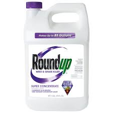 Roundup Super Concentrate 1 Gallon Weed And Grass Killer