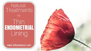 shedding uterine lining before period treatments for thin endometrial lining dr watson