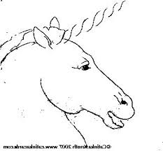 How To Draw A Realistic Horse Head Coloring Pages For Kids Unicorn Ck Sm