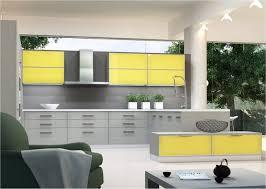 Modern Yellow And Grey Kitchen Ideas