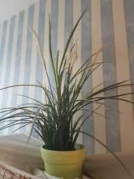künstliche pflanzen in sachsen ebay kleinanzeigen