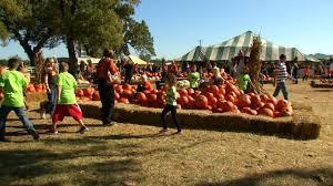 Carmichaels Pumpkin Patch Oklahoma by Stolen Tractor Creates More Work For Bixby Farmer Newson6 Com