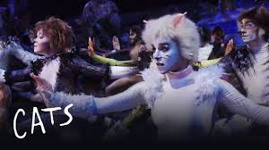 cats on broadway cats the musical 2016