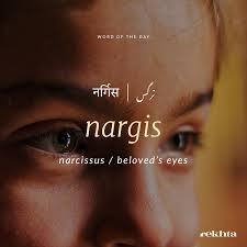 Nargis Love Urdu☺ Pinterest Urdu Words Words And Hindi Words
