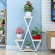 farbe 1 blütenstand im freien blumenregale wohnzimmer