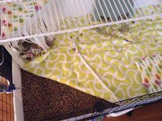Pine Bedding For Guinea Pigs by How To Use Fleece Bedding In Your Guinea Pig U0027s Cage Guinea Pig
