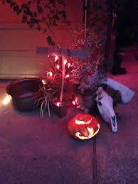 Scary Things To Do On Halloween by Spooky Motion Sensitive Halloween Eyes U2013 Netninja Com