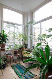 Plants In Bathroom Images by 42 Best Plants U0026 Light Images On Pinterest Building Dish And