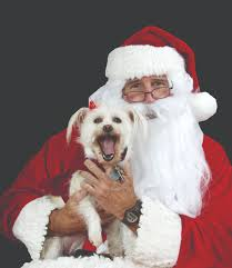 Santa Paws - County Of Henrico, Virginia Holiday Barn On Twitter We Are Happy To Donate This Adorable A Place Where Doggies Paddle Life Richmondcom Ipirations West Elm Hollywood Georgetown Letters Santa Paws Bellas Visits Holiday Barn Pet Resorts Doggie Daycare April Unique Tradition Lives In Valentines Va News And The History Of Pet Resorts Skye Is Proud Present Holidaybarn 30 Cool Sites Visit Within 100 Miles Richmond Travel