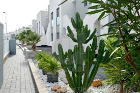 100 Modern Townhouses New Townhouses In Torrevieja Spain License