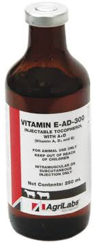 Vitamin E-AD-300 Injection For Cattle | Jeffers Pet Healthe Maximum Strength Vitamin E For Horses Equine Medical Pregnant Kim Kardashian Natural Glow At The Barns Photo 212 Best Paleo Salad Recipes Images On Pinterest Salad Vitaminbarn Your Savings Dashboard Walmarts Catcher 513 Miniaadventurefairy Garden Ideas From Barn Horse Supplements Farnam Amazoncom California Immunity Shots 4 Fluid Ounce Gel Capsules A Fish Oil Primrose Rice O Generic B Complex Fortified Leedstonecom
