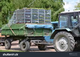 100 Seedling Truck KALININGRAD RUSSIA MAY 16 2015 Racks Stock Photo Edit Now