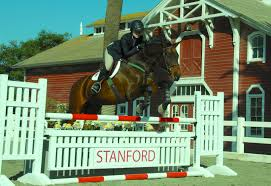 Stanford Equestrian » Horses Designing Your Stable For Fire And Emergency Safety Exploring Connecticut Barns Uconnladybugs Blog Barn Pros Projects Gallery Horses Pinterest Horse 111 Best Riding Arenas Animal Care Sheds Water Wheels Dog Breyer Classics 3horse Play Set Walmartcom Successful Boarding At Expert Advice On Horse Pasture In Central Alabama Shelclair 10 Tips Farms Stables To Get Ready Spring The Stanford Equestrian Horses Some Of The Horses At Barn Horseback Lancaster