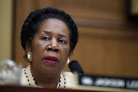 Congresswoman who bumped passenger from flight plays the race