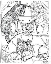 Cool Coloring Pages To Print Free Printable Realistic Animal Best Of Adult