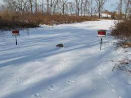 Sinking Spring Borough Snow Emergency by Lehigh Valley Ramblings December 2013
