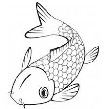 Picture Of Japanese Koi Fish