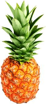 Orange Pineapple transparent PNG StickPNG