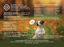 No Shed Dogs Illinois by Chicago Canine Rescue
