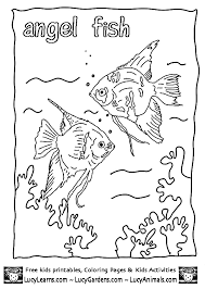 Tropical Angel Fish Coloring Page Free Pictures By Lucy LearnsAngel Book