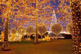 Wonderful How To Put Lights On Outside Tree Branches Plans Where See Christmas In Nashville
