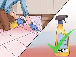 Fleas Hardwood Floors Borax by Can Fleas Live On Hardwood Floors Titandish Decoration