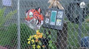 100 Tiger Truck Stop Louisiana Video Popular Truck Stop Tiger Euthanized