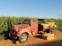 Clovis Ca Pumpkin Patch 2015 by Parks Zoos Museums U2014 Merced County Events