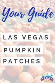 Half Moon Bay Pumpkin Patches 2015 by Best 25 Pumpkin Patch Las Vegas Ideas On Pinterest Mother