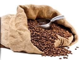 Coffee Beans Bag Trowel