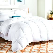 comforter or duvet cover echo jaipur comforter and duvet cover