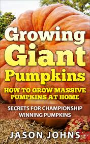 Fertilizer For Giant Pumpkins by Growing Giant Pumpkins U2013 How To Grow Massive Pumpkins At Home