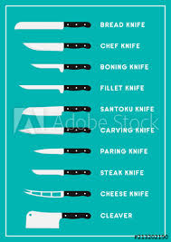 Kitchen Knives Names Flat Kitchen Knife Set With Names Vector Infographic