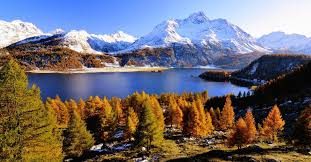 ferienwohnungen berghütte in der schweiz ab chf 57 hometogo