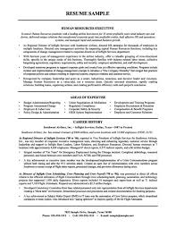 Large Full Resume Examples Human Resources Objective