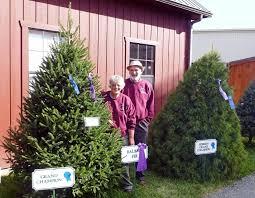 Christmas Tree Baler by Cranston U0027s Christmas Tree Farm Christmas Trees U0026 Wreaths