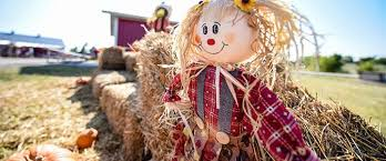 Pumpkin Patches In Okc by 25 Fall Festivities Around The Okc Metro You Don U0027t Want To Miss