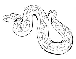 Snake Coloring Pages Animals