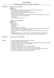 Download Animal Care Attendant Resume Sample As Image File